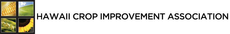 HCIA Logo